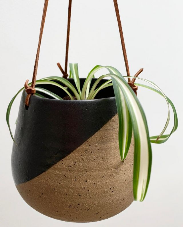 Taste Makers - Monarch Pottery Blog Directory Image