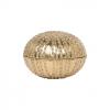 Obelia Brass Gold Clam Shell Box