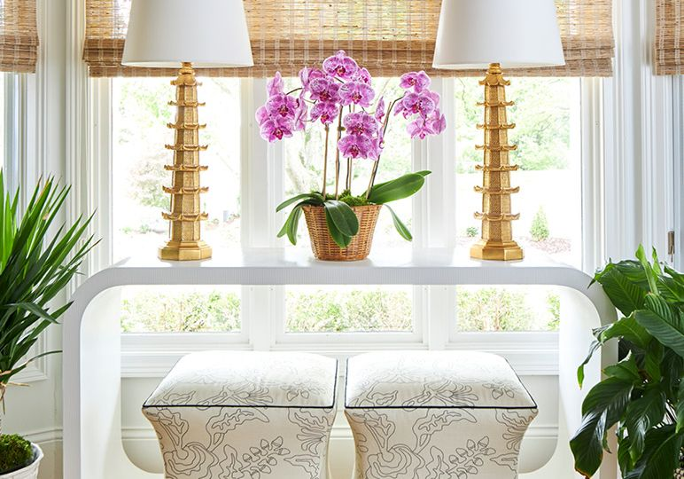 20 Classics-Orchids Blog Directory Image