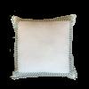 Blue & White Throw Pillow